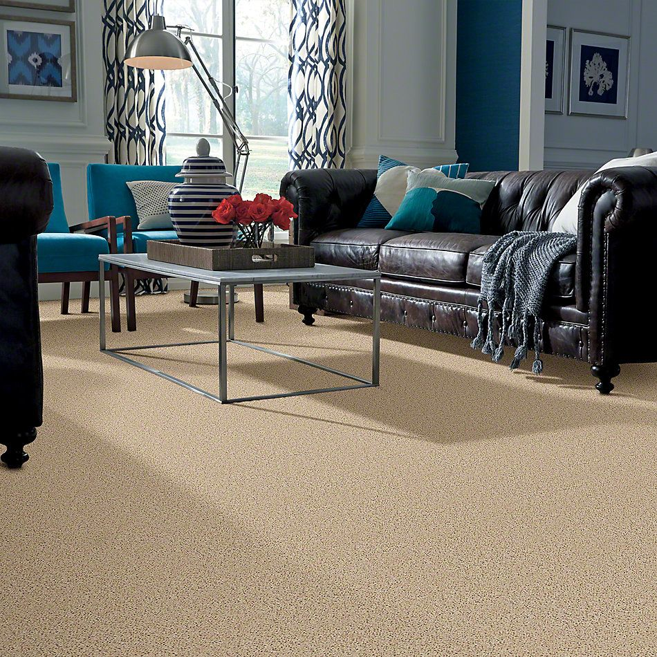 Shaw Floors Fusion Value 300 Sand Dollar 00202_E0281