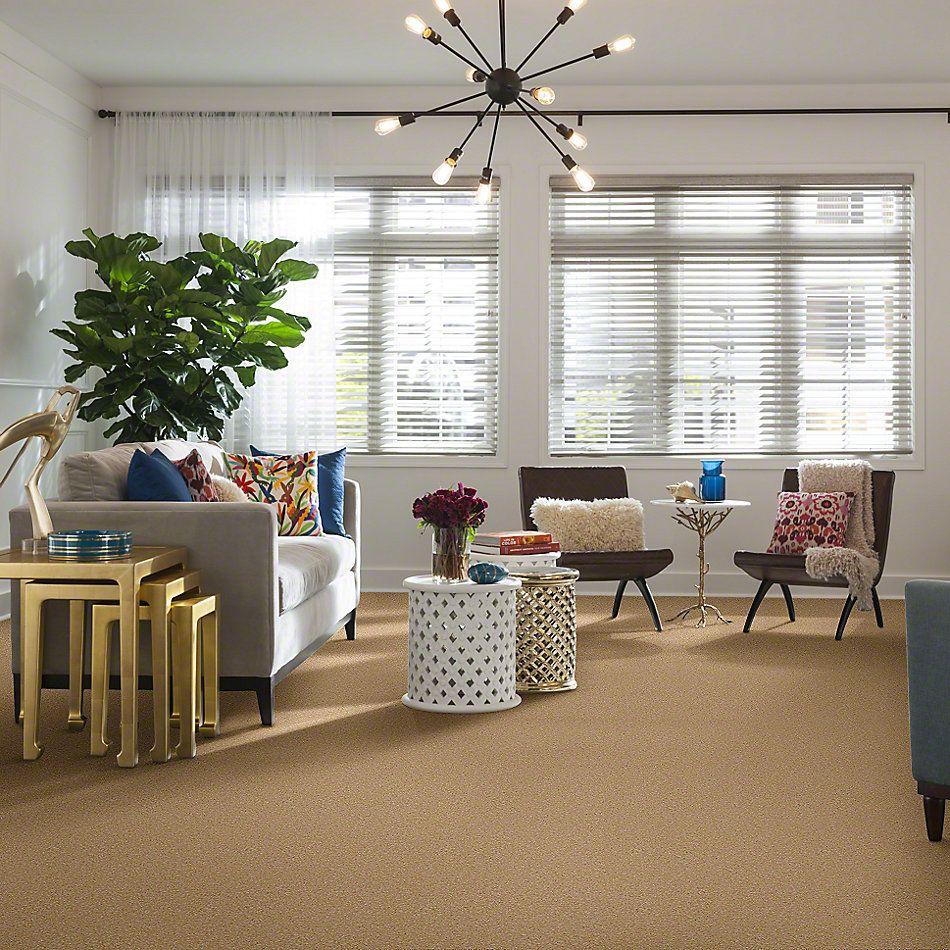Shaw Floors SFA Timeless Appeal III 15′ Cornfield 00202_Q4315