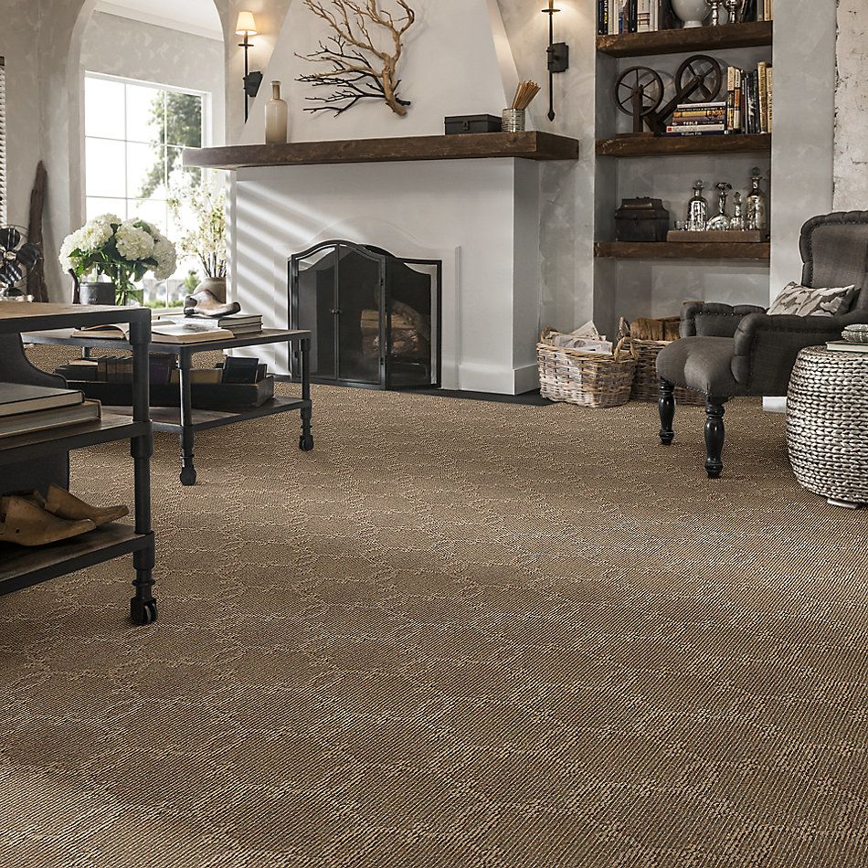 Shaw Floors SFA Your World Lg Southern Andes 00202_CC30B