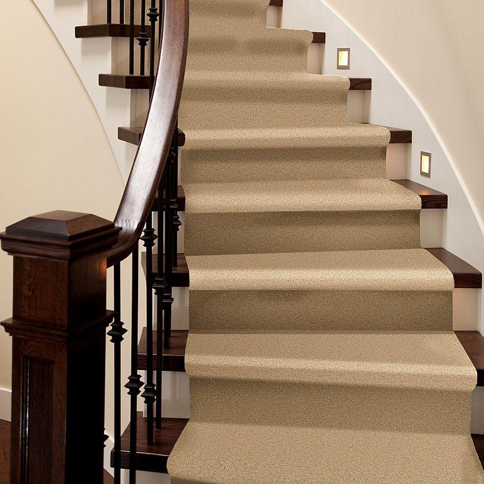 Shaw Floors Foundations Sandy Hollow Classic II 15′ Cornfield 00202_E0551