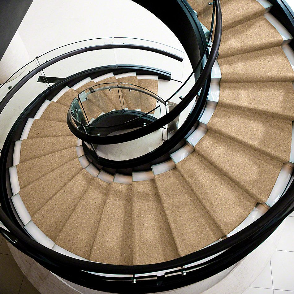 Shaw Floors Sandy Hollow Classic Iv 12′ Cornfield 00202_E0554