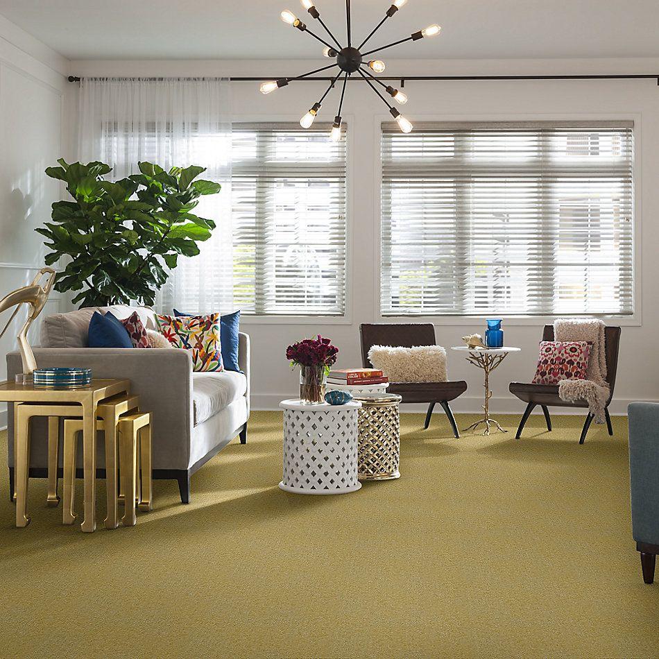 Shaw Floors Property Solutions Roadside Breadfruit 00202_HFA83