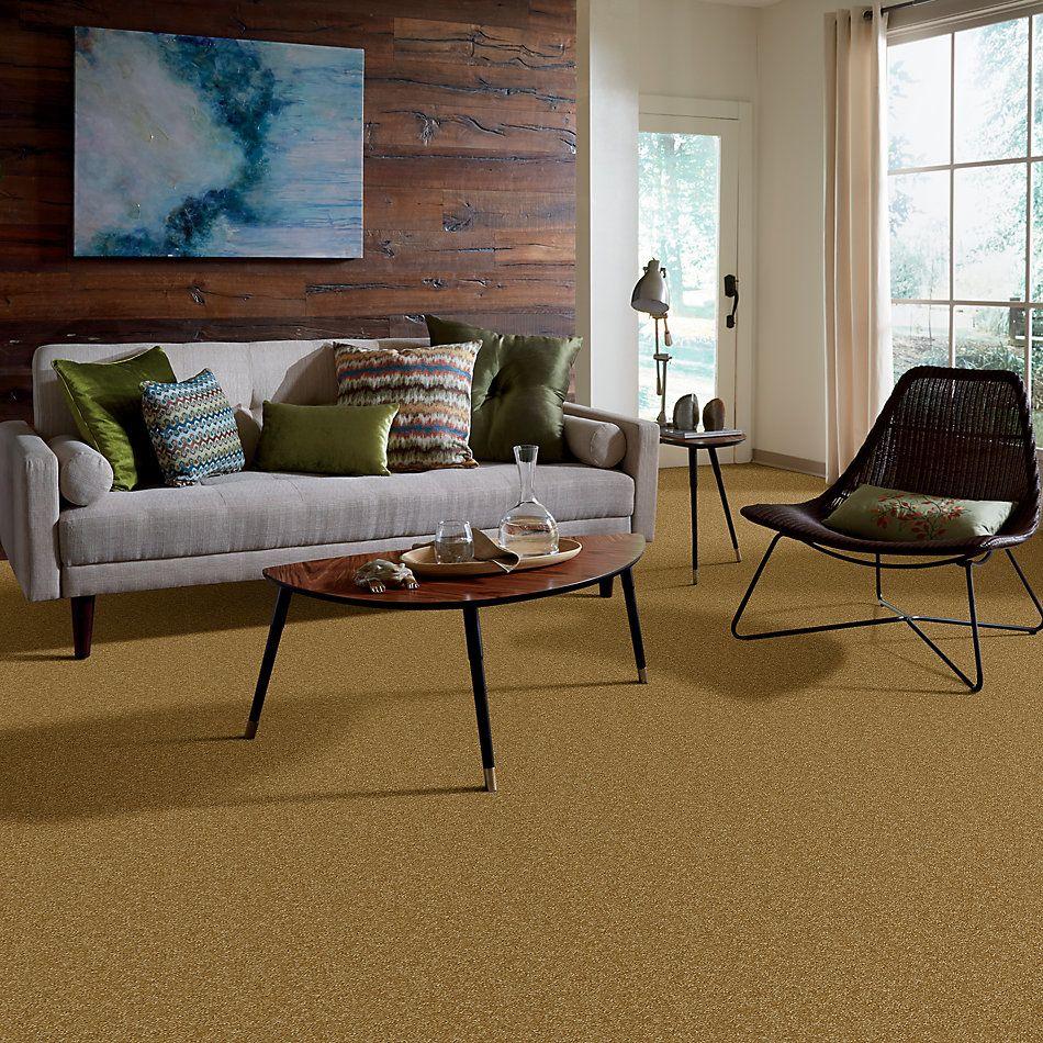Shaw Floors Queen Harborfields I 15′ Golden Rod 00202_Q4719
