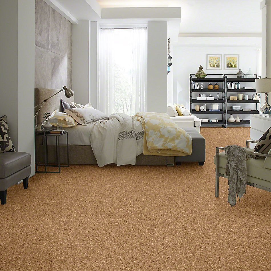 Shaw Floors SFA Vivid Colors I Honey 00203_0C160