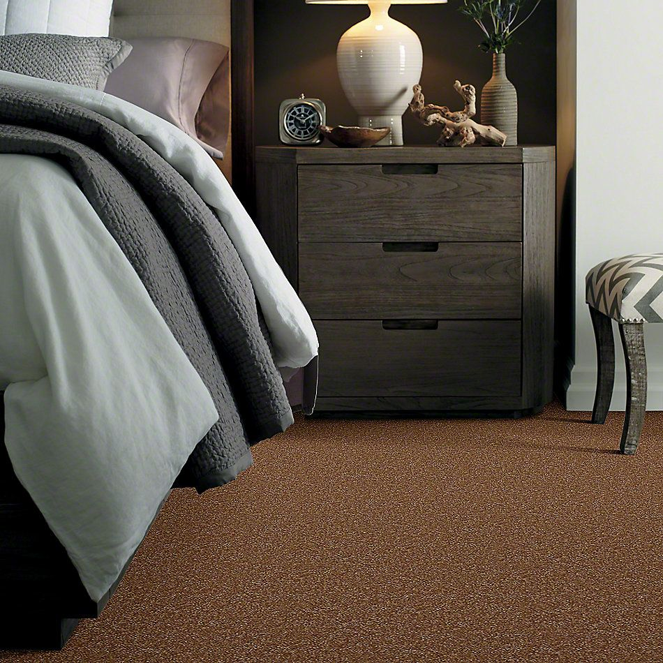 Shaw Floors Town Creek III Pecan Shell 00203_52S32
