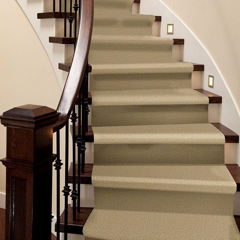 Shaw Floors Shaw Flooring Gallery Union City II 12′ Crumpet 00203_5306G