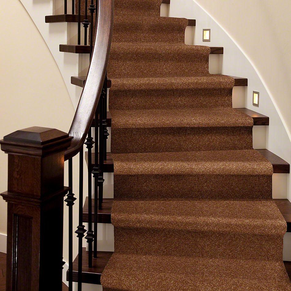 Shaw Floors Queen Versatile Design I 15′ Pecan Shell 00203_Q4784