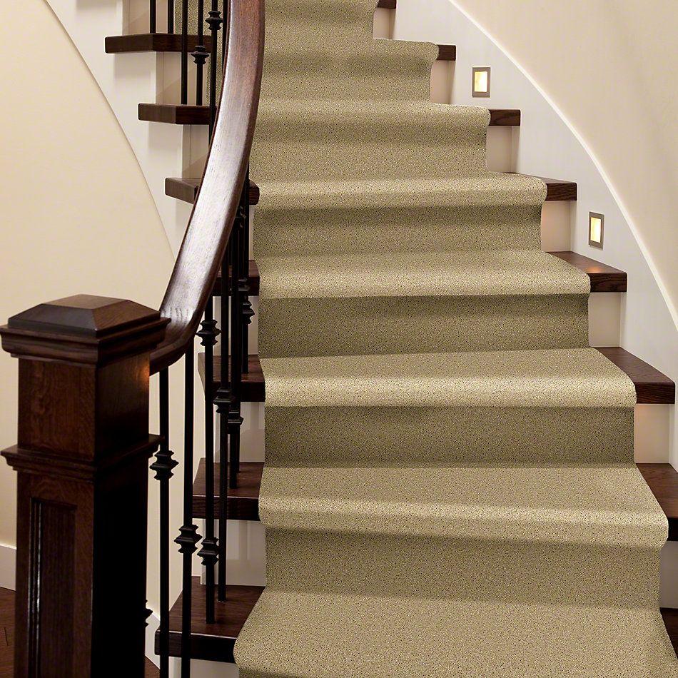 Shaw Floors SFA Drexel Hill III 12′ Crumpet 00203_EA055