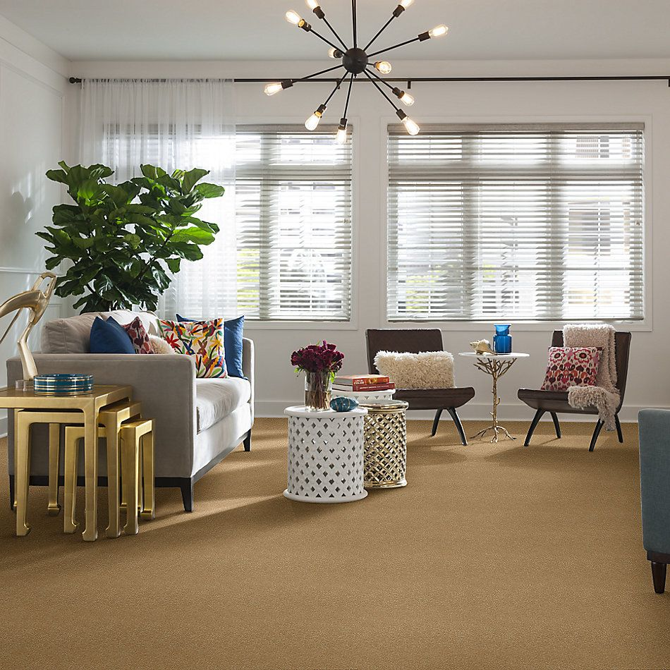 Shaw Floors Shaw Floor Studio Home News II 12′ Mustard Seed 00203_FS130