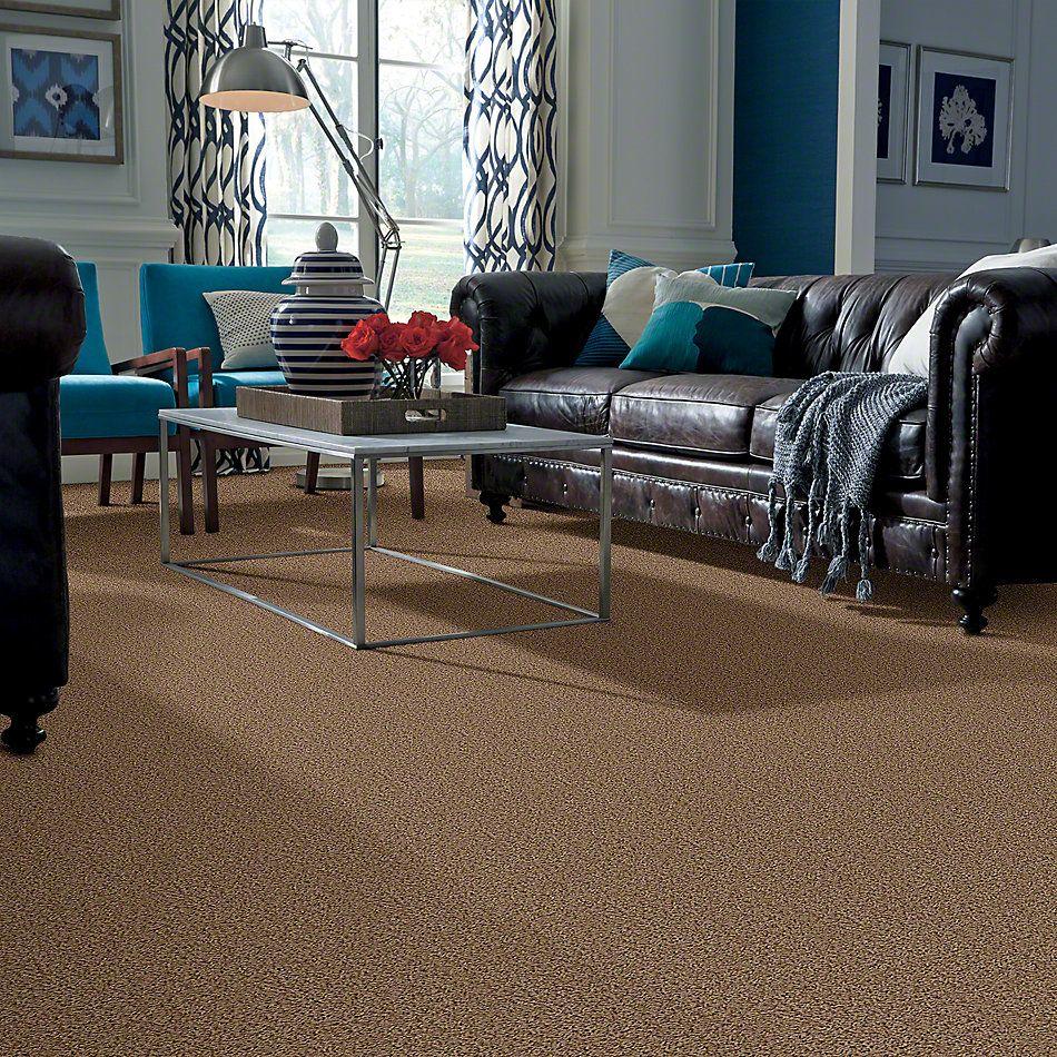 Shaw Floors Flourish Antique 00203_Q4206