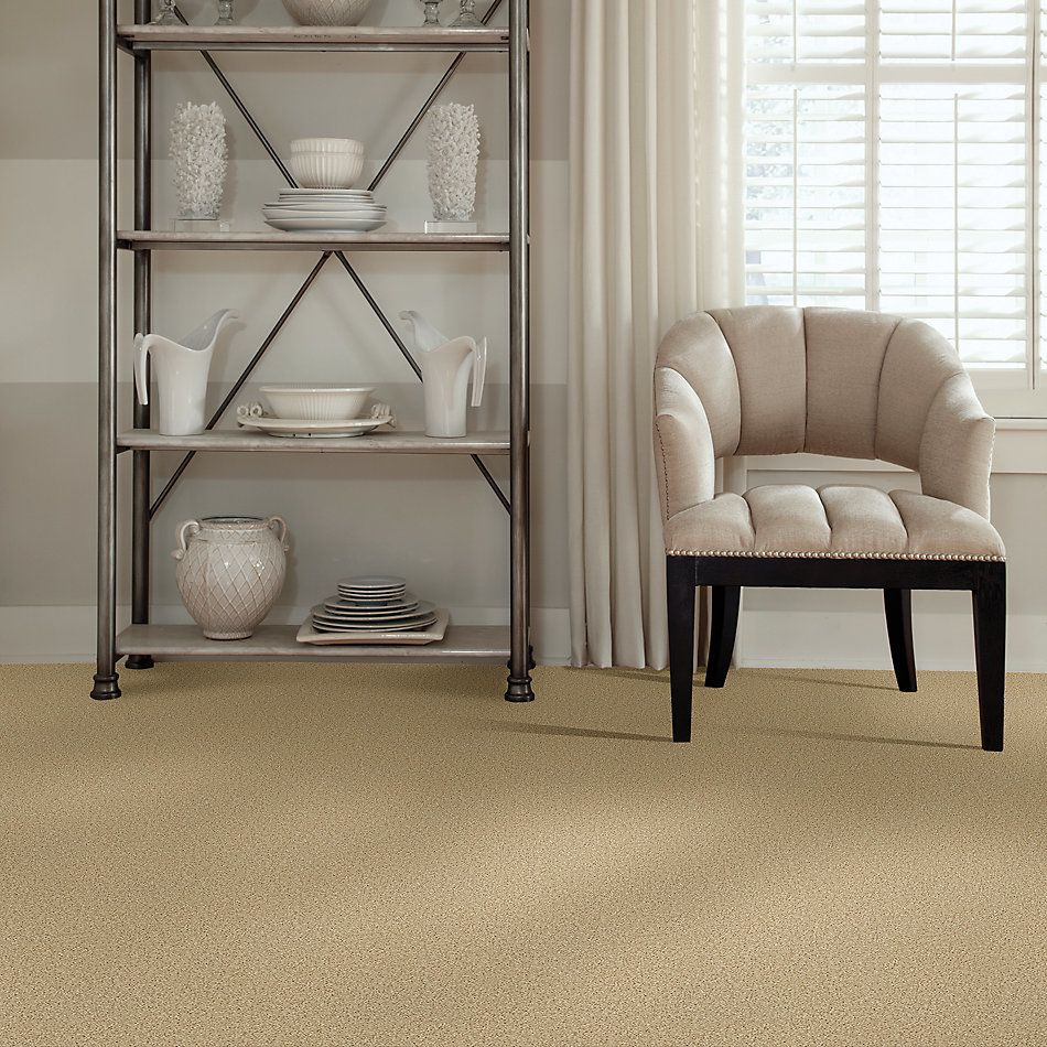 Shaw Floors Roll Special Xv865 Crumpet 00203_XV865