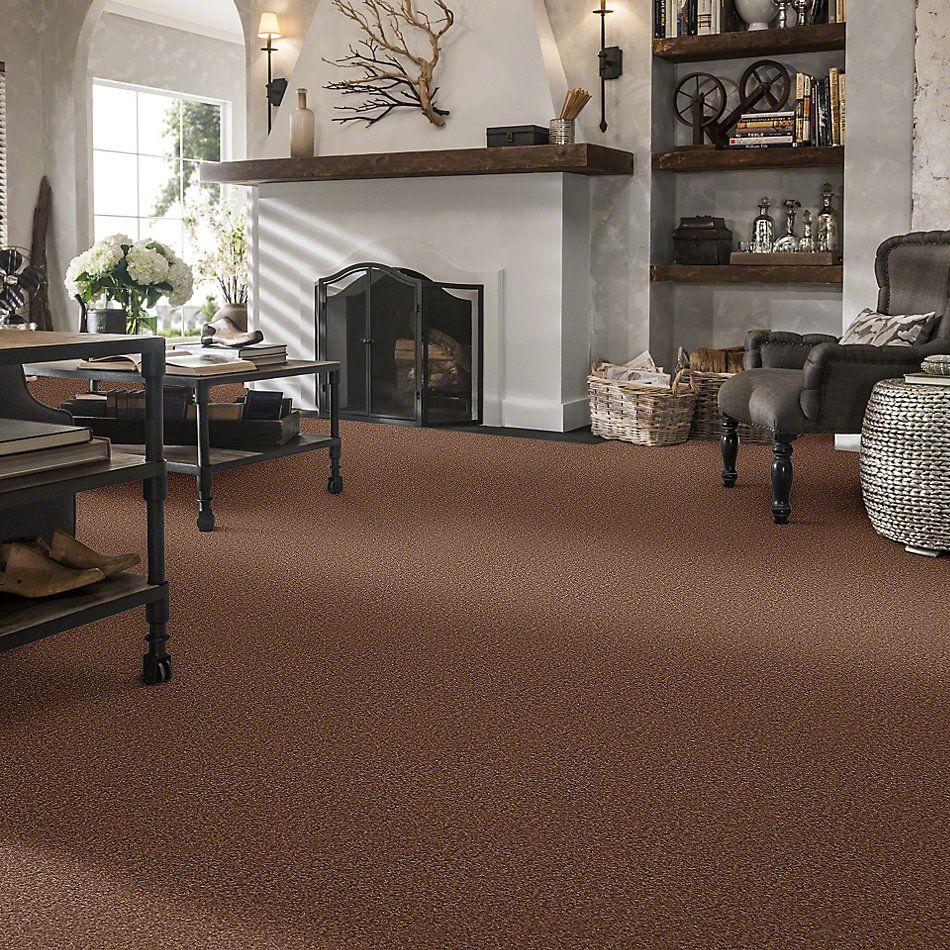 Shaw Floors Sandy Hollow II 15′ Tuscany 00204_Q4276