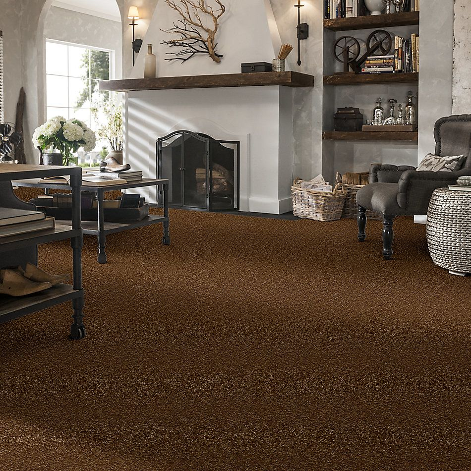 Shaw Floors Value Collections Passageway 3 Net Camel 00204_E9377