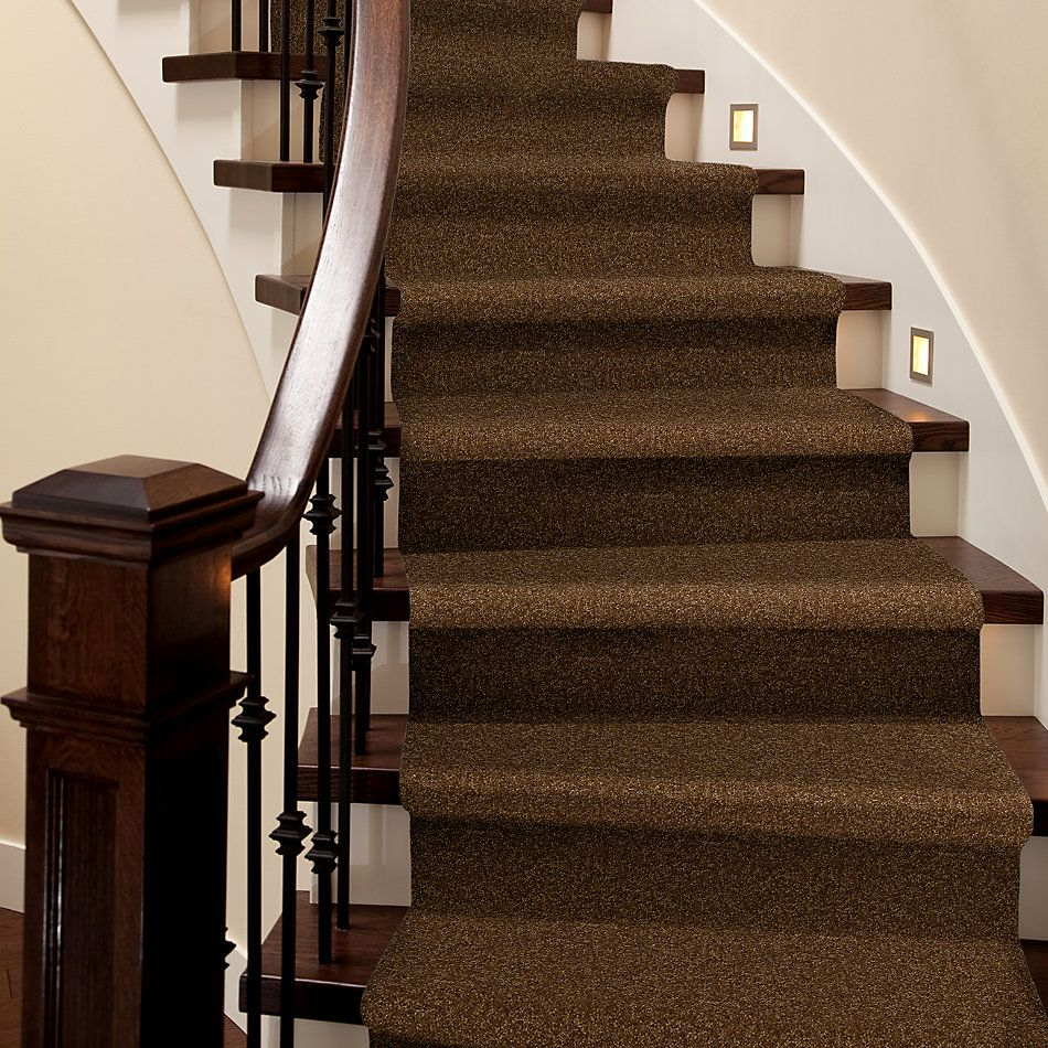 Shaw Floors Value Collections Passageway II 15 Net Camel 00204_E9621
