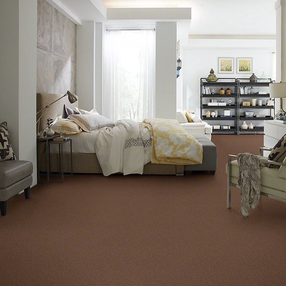 Shaw Floors Anso Premier Dealer Great Effect I 12′ Tuscany 00204_Q4327