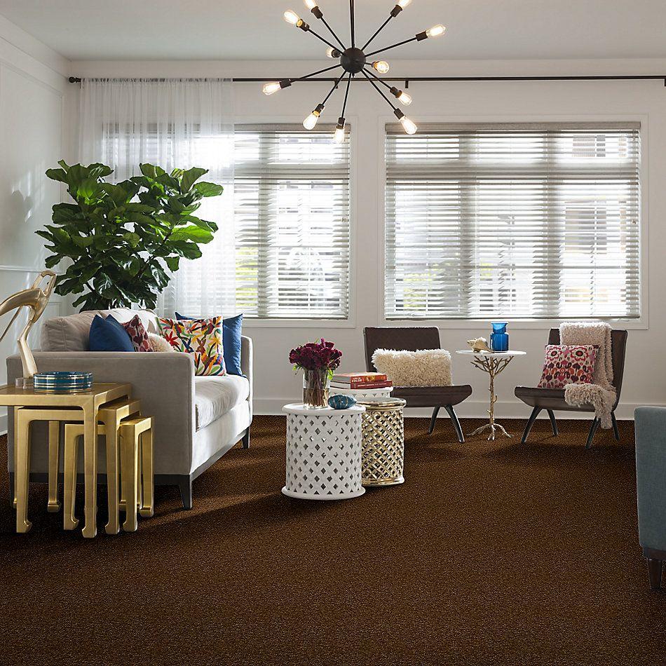 Shaw Floors Queen Harborfields I 12′ Camel 00204_Q4718