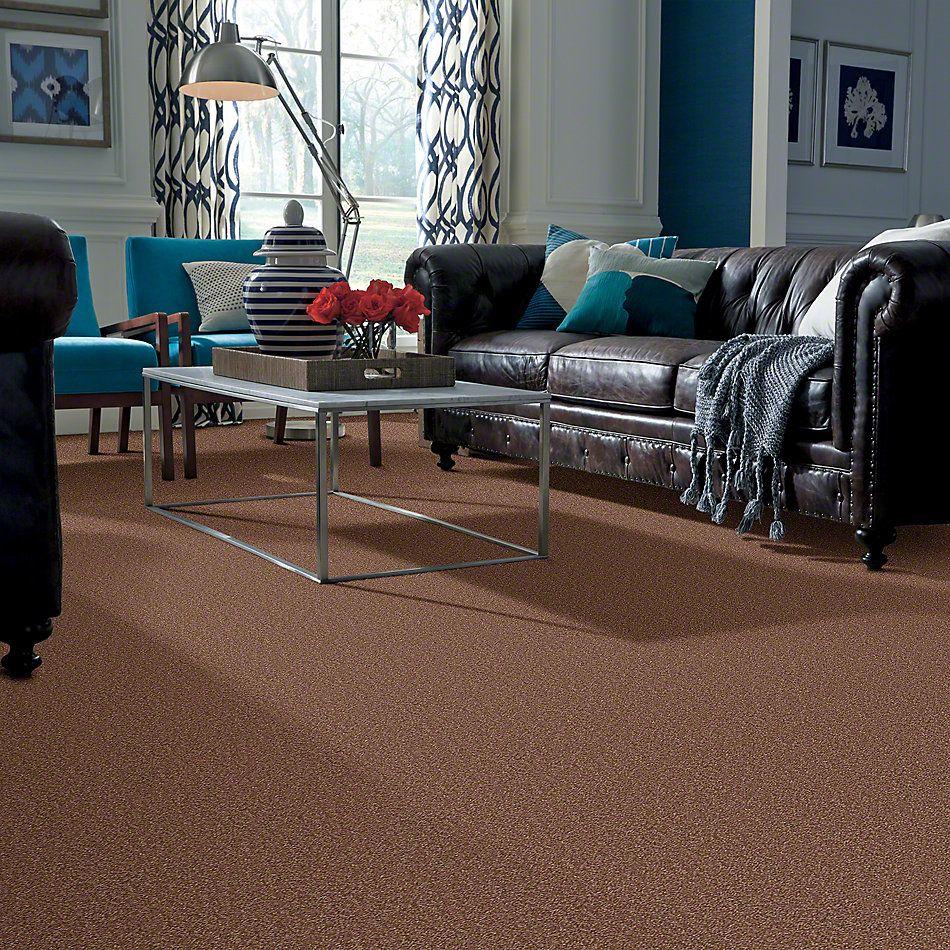 Shaw Floors Shaw Design Center Sweet Valley I 15′ Tuscany 00204_QC421