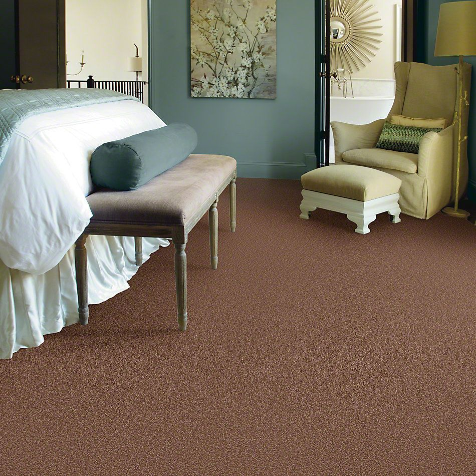 Shaw Floors Shaw Design Center Sweet Valley II 12′ Tuscany 00204_QC422