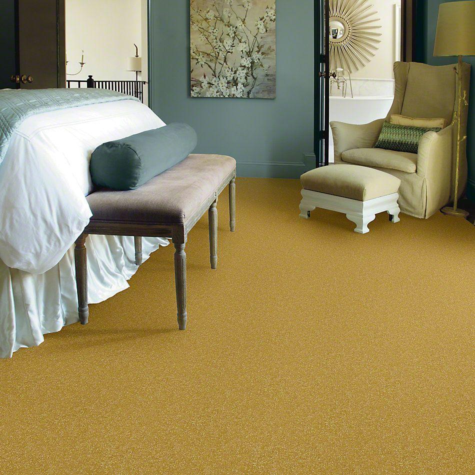 Shaw Floors Foundations Passageway II 15 Daffodil 00205_52S25