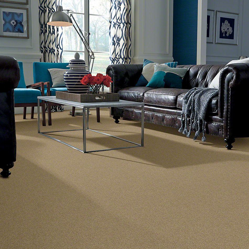 Shaw Floors SFA Timeless Appeal III 12′ Sahara 00205_Q4314