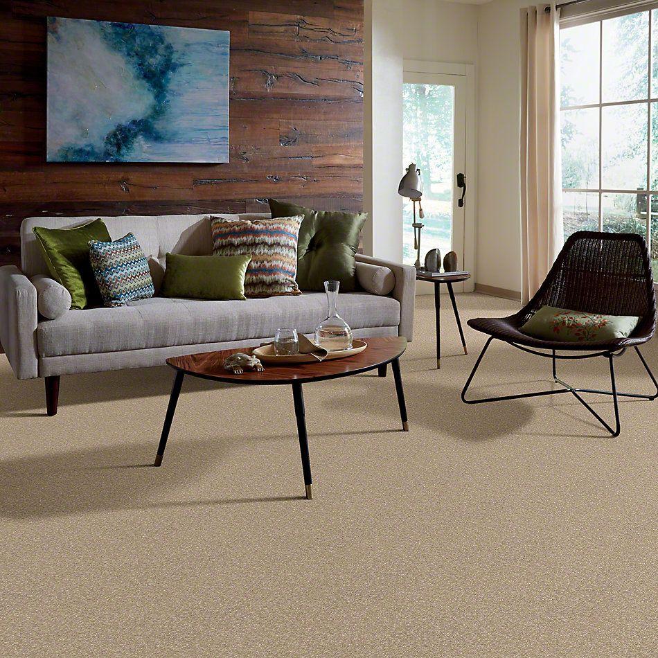 Shaw Floors Anso Premier Dealer Great Effect I 12′ Sahara 00205_Q4327