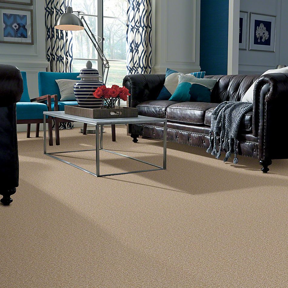Shaw Floors Anso Premier Dealer Great Effect I 15′ Sahara 00205_Q4328