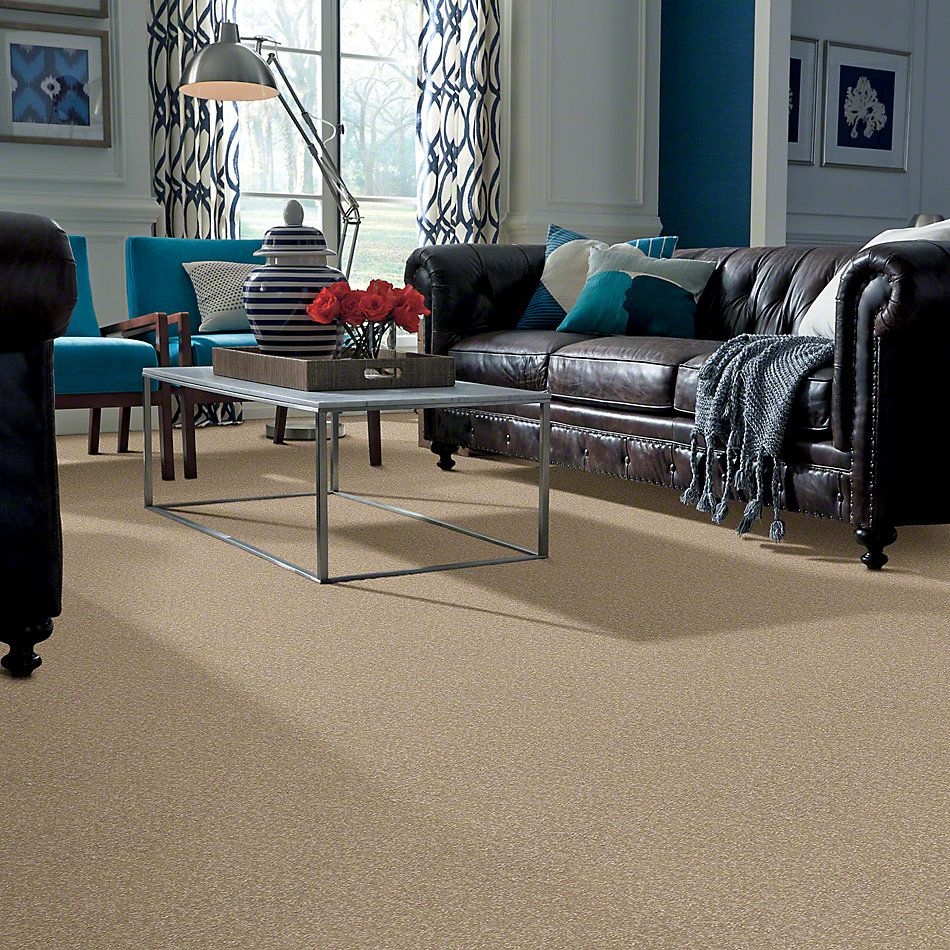 Shaw Floors Shaw Design Center Sweet Valley I 12′ Sahara 00205_QC420