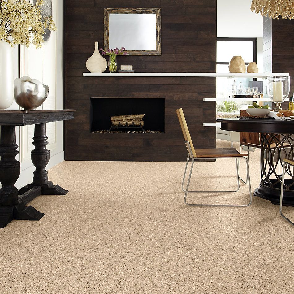 Shaw Floors Value Collections Shake It Up Solid Net Desert Sand 00210_E9857