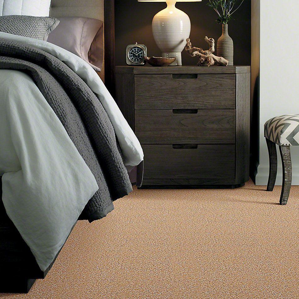 Shaw Floors Ever Again Nylon Eco Choice II Sunray 00210_PS542