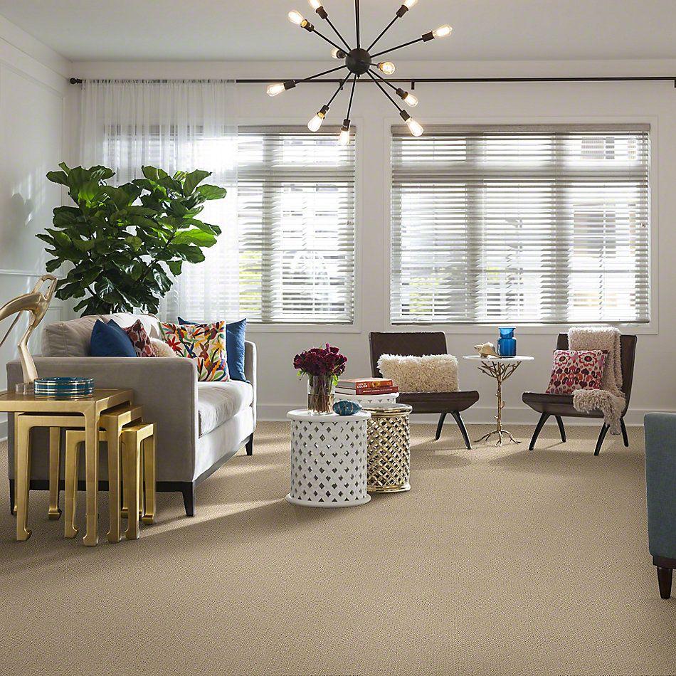 Shaw Floors Traditional Elegance Honeycomb 00211_52P13