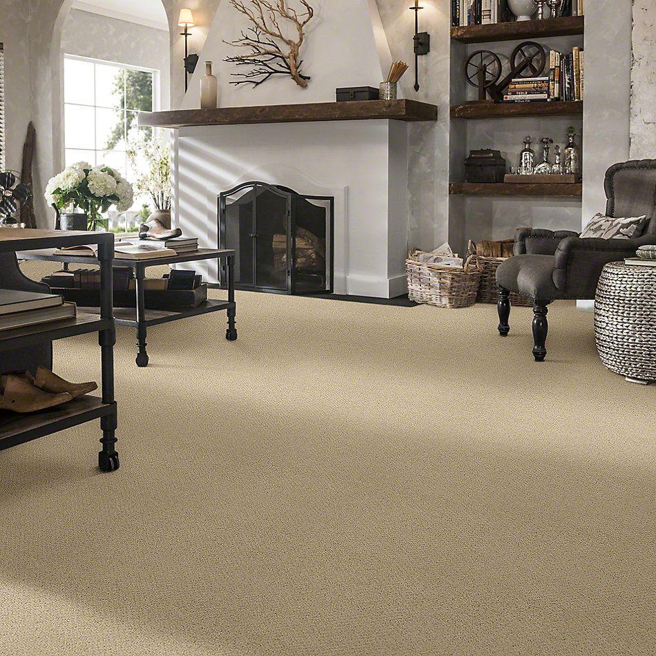Shaw Floors Shaw Flooring Gallery Supreme Comfort Loop Chamois 00220_5469G