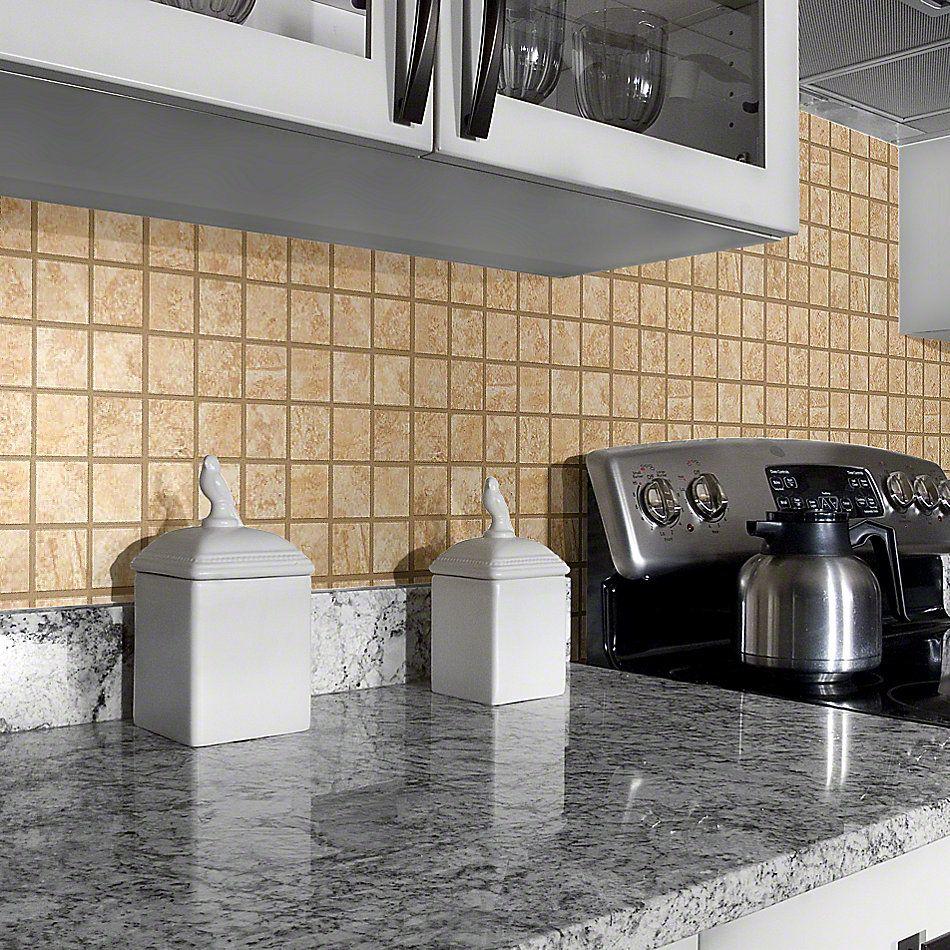 Shaw Floors Ceramic Solutions Sierra Madre Mosaic Canyon 00220_CS24L