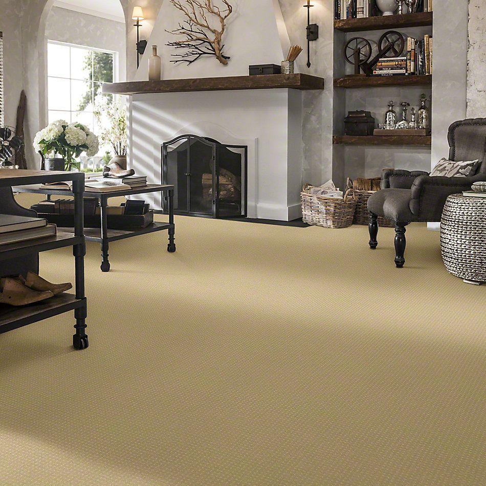 Shaw Floors Enduring Comfort Pattern Chamois 00220_E0404