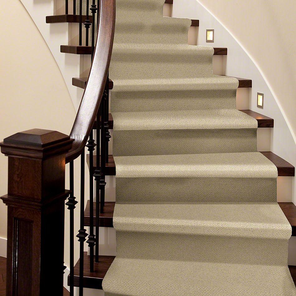 Shaw Floors SFA Sincere Beauty Loop Chamois 00220_EA184