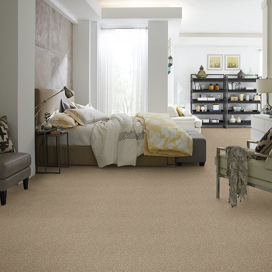 Shaw Floors Value Collections Shake It Up Tonal Net Croissant 00220_E9859