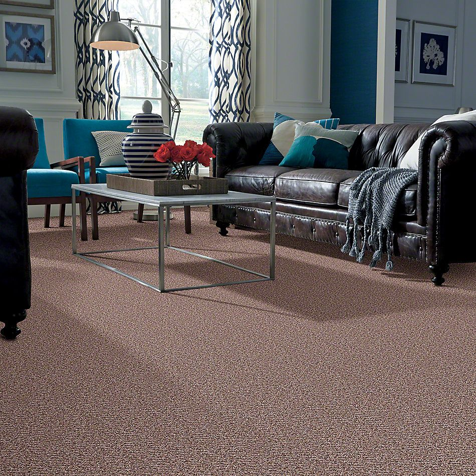 Shaw Floors Property Solutions Bedford Tweed Silk Weave 00220_PS592