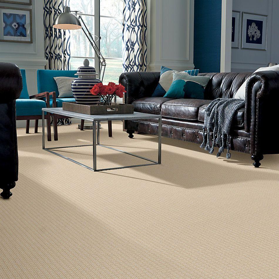Anderson Tuftex American Home Fashions Living Large Dream Dust 00220_ZA884