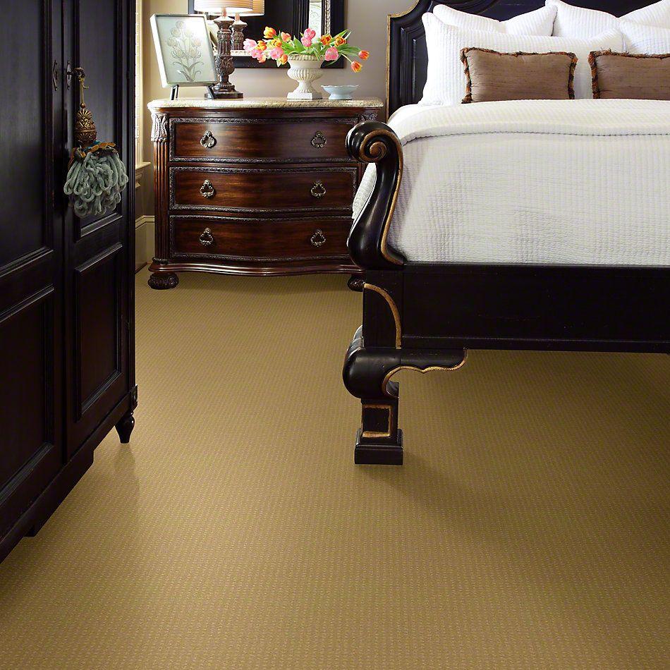 Shaw Floors Enduring Comfort Pattern Solar 00221_E0404