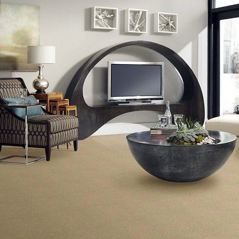 Shaw Floors SFA Sincere Beauty Loop Solar 00221_EA184