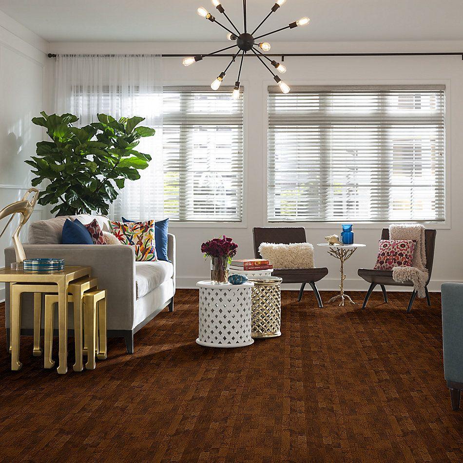 Shaw Floors Richmond American Homes Classic Cider 00221_HA014