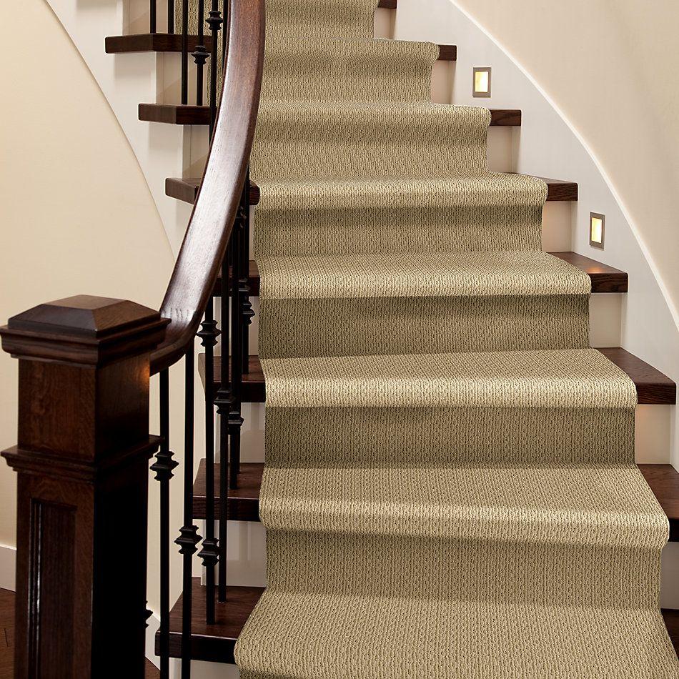 Anderson Tuftex American Home Fashions Proud Design Chamois 00221_ZA883