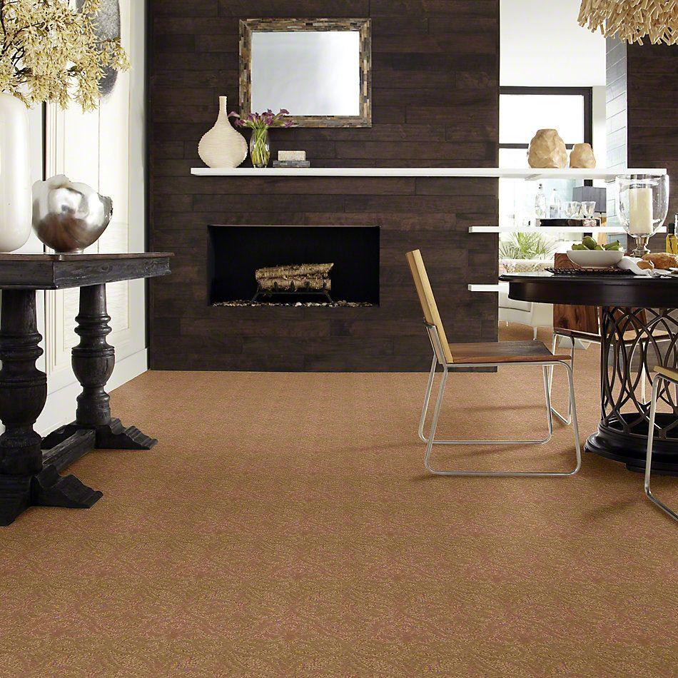 Shaw Floors Caress By Shaw Modern Amenities Brass Lantern 00222_CCP43
