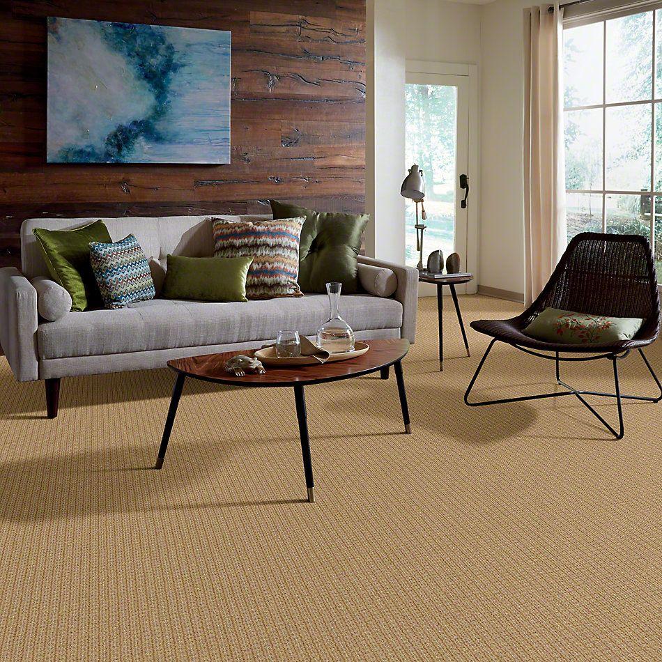 Anderson Tuftex Shaw Design Center Stylish Trend Tiger Eye 00223_884SD