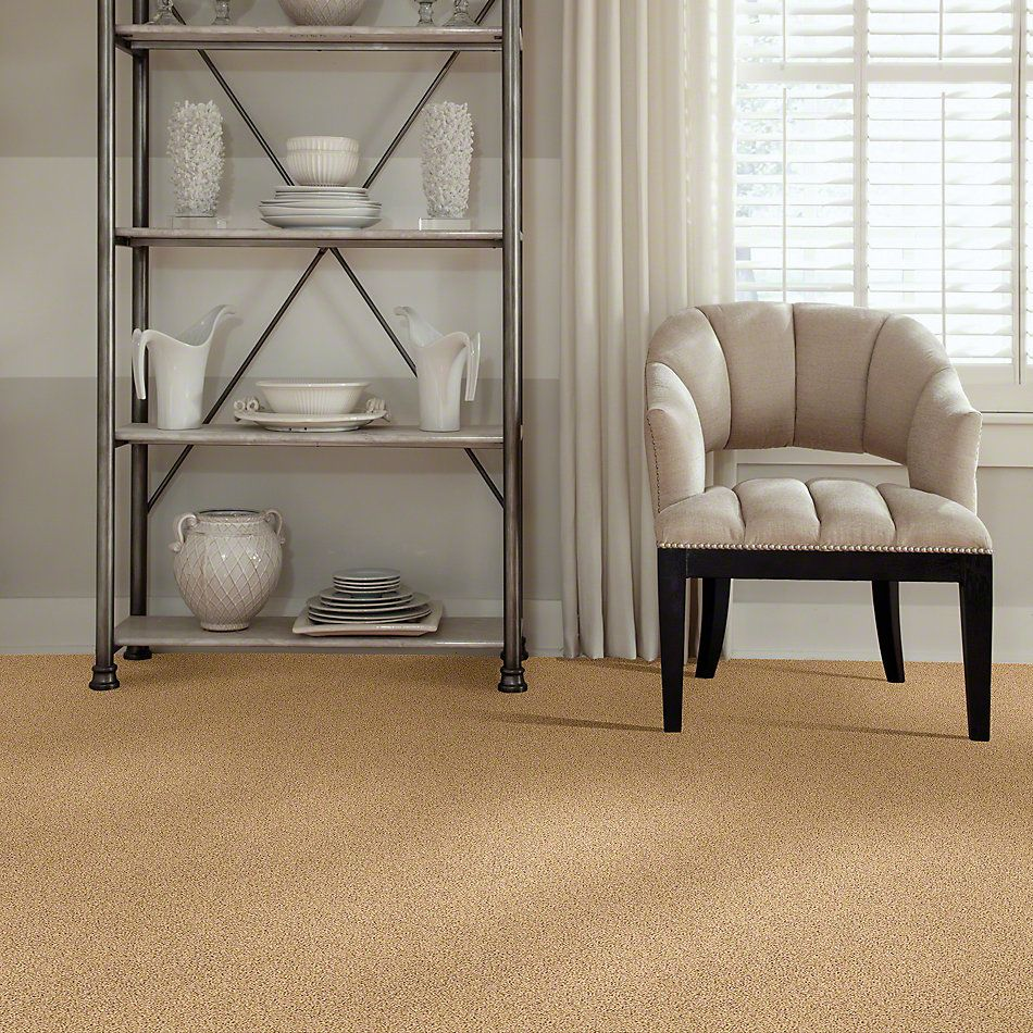 Shaw Floors Lonestar Acorn 00223_E0113