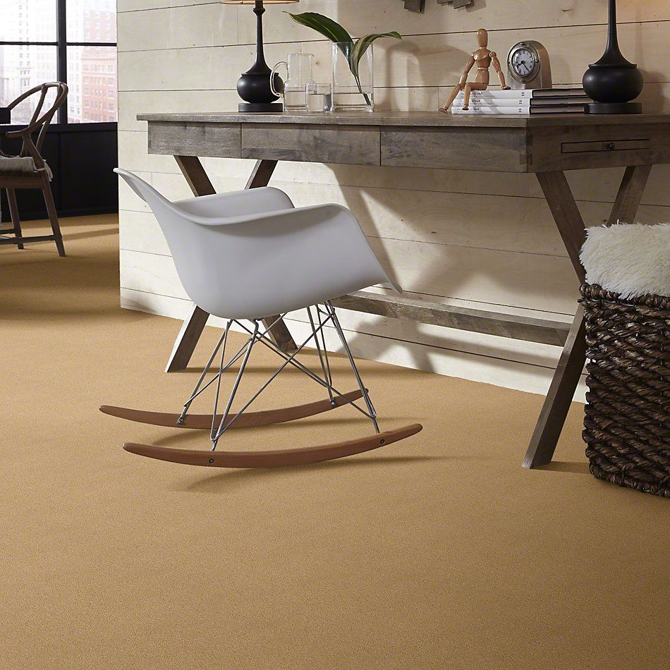Anderson Tuftex Second Glance Tawny Bisque 00225_ZZ058