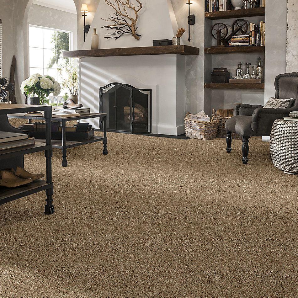 Shaw Floors Nfa/Apg Fortunate (a) Bamboo 00230_NA262