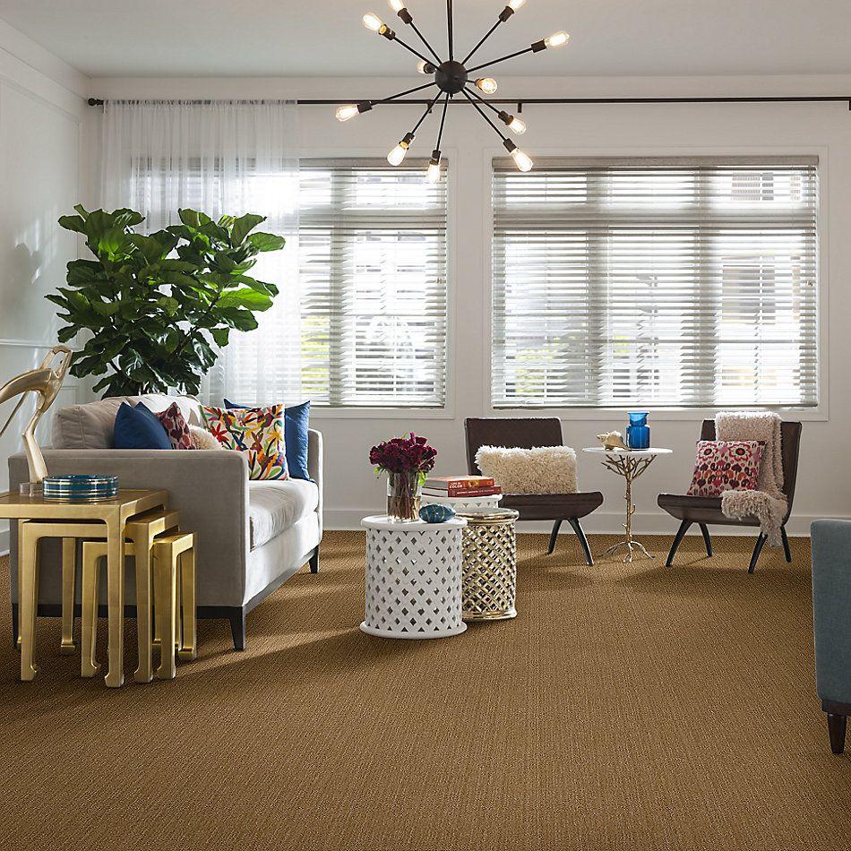 Anderson Tuftex American Home Fashions Caswell Tigress 00235_ZA775