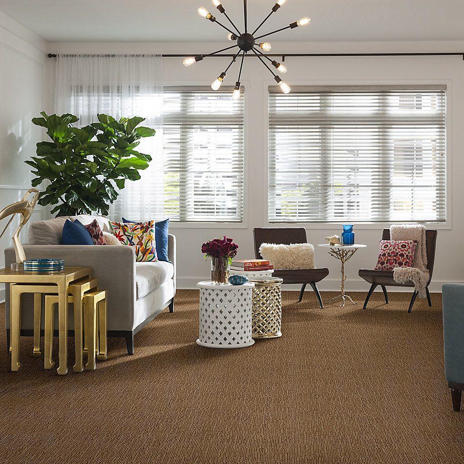 Anderson Tuftex American Home Fashions Roma Tigress 00235_ZA796