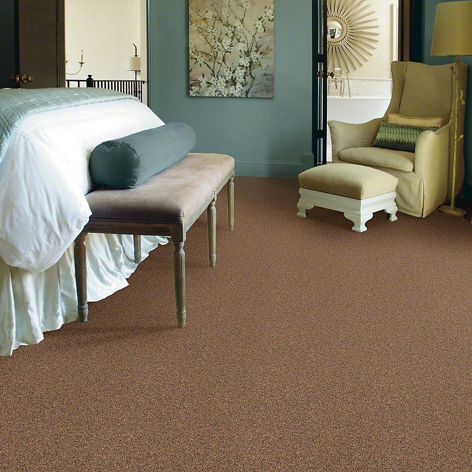 Shaw Floors Remember Me (s) Pecan Praline 00242_E0694