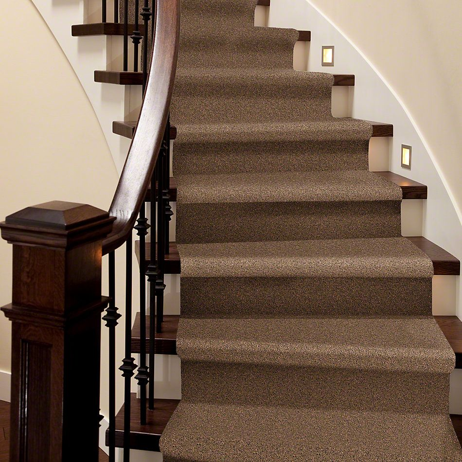 Shaw Floors Value Collections Remember Me (s) Net Pecan Praline 00242_E0892